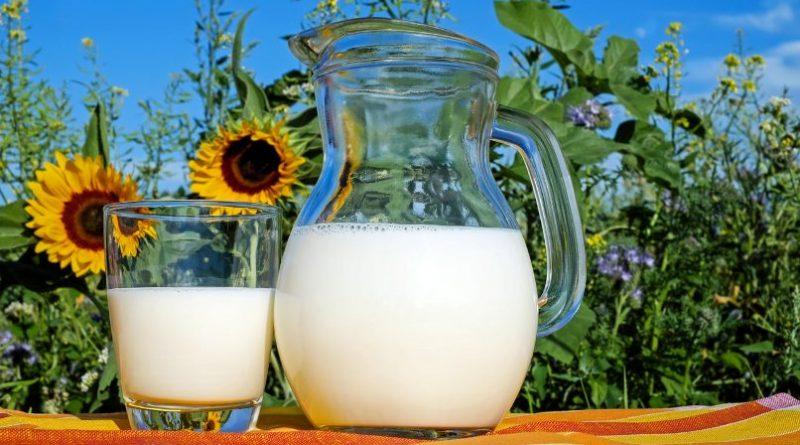 Прерађивач млека – нови образовни профил